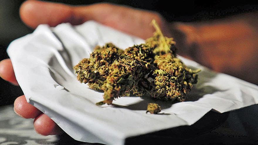 Der Anbau und Konsum von Marihuana boomen auf Mallorca