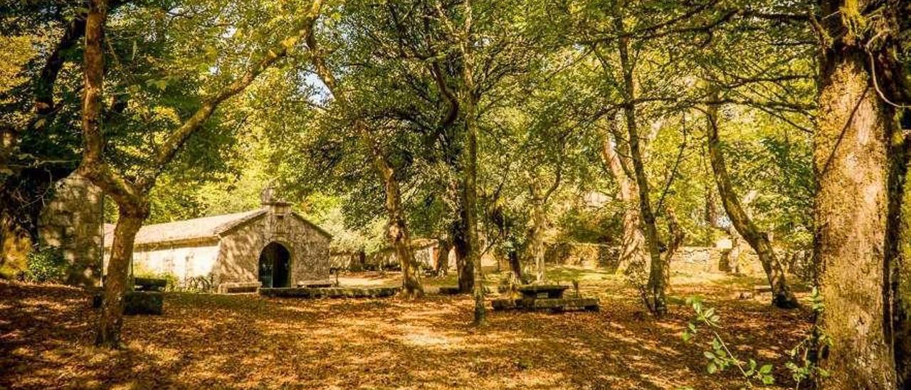 El Monte Aloia fue el primer Parque Natural de Galicia tras su declaración en 1978. // D.B.M.