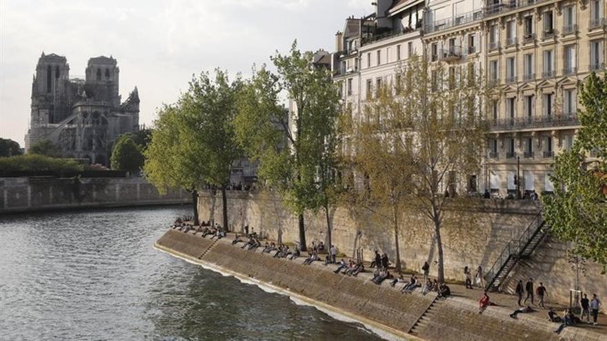 ¿Es posible reconstruir Notre Dame en cinco años?