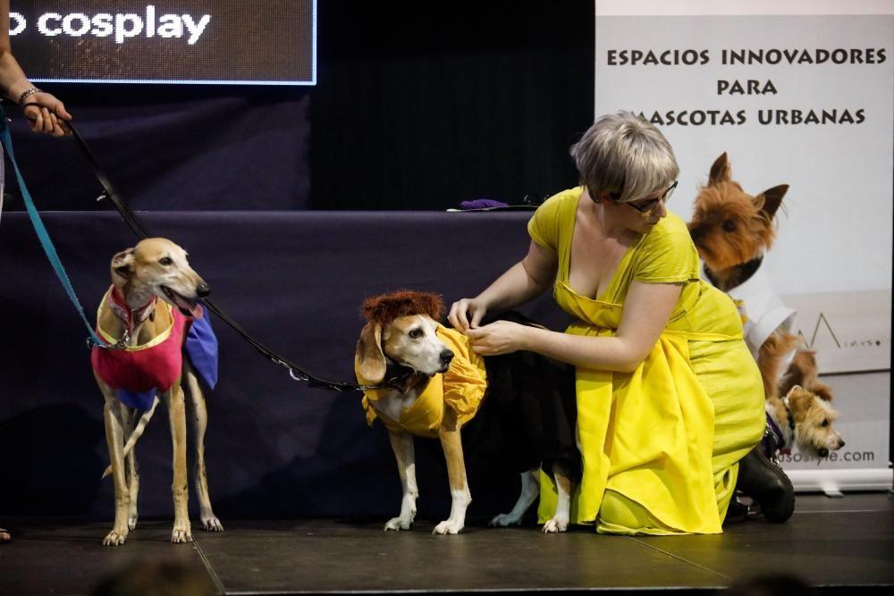 """Desfile """"Cómic Dog"""" en Metrópoli"""