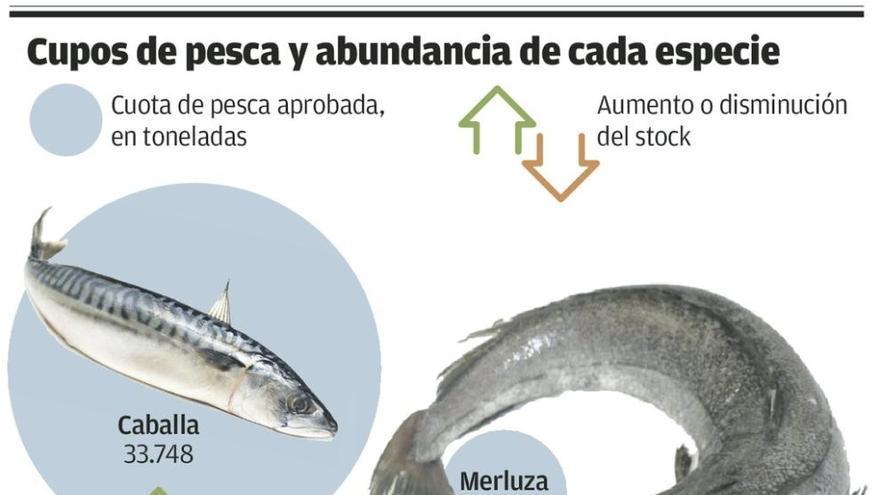 Los científicos constatan una mejoría de los stocks de bocarte, caballa y sardina