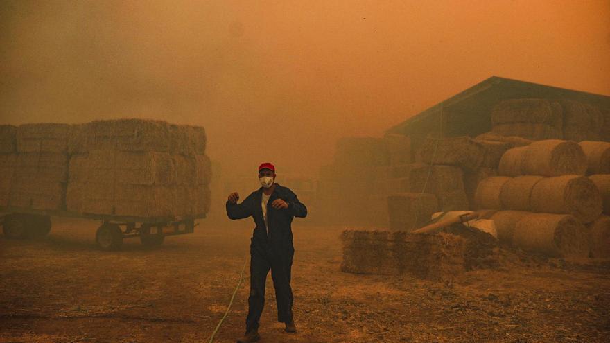 GALERÍA | El fuego declarado en el pueblo zamorano de Lober de Aliste, en imágenes