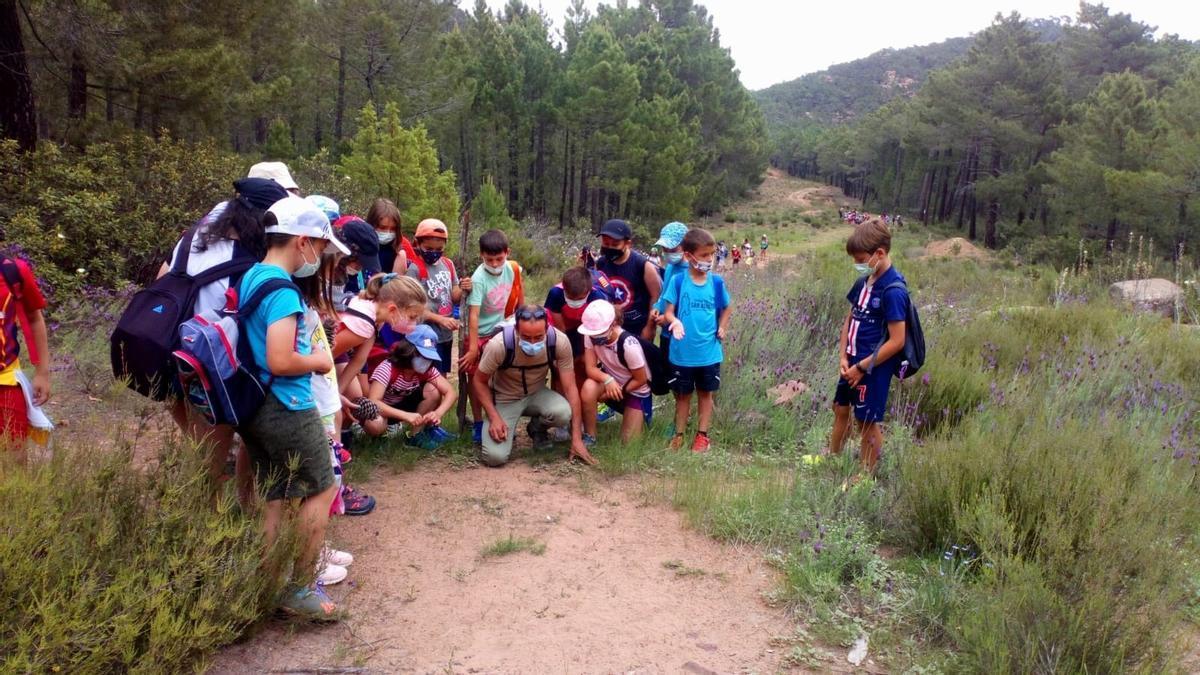 La Red Natural de Aragón llega a más de 3.000 escolares este año a pesar de la pandemia.