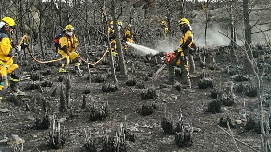 Extinguido el incendio en Alcúdia
