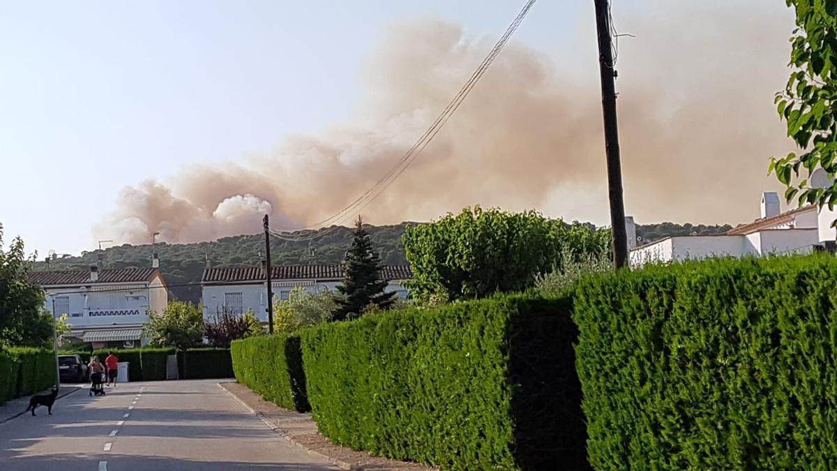 Incendi al massís del Montgrí