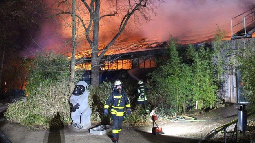 Mueren en un incendio en zoo alemán unos 30 animales del recinto de los monos