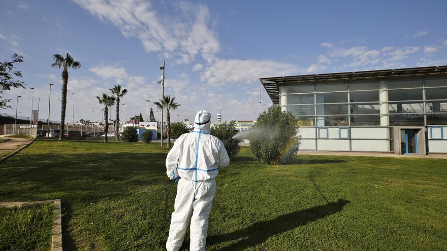 Fumigación contra la plaga de mosquitos junto al Centro Municipal de Ocio y la urbanización Doña Inés en Torrevieja/ Vídeo de JOAQUÍN CARRIÓN/PROYECTO MASTRAL
