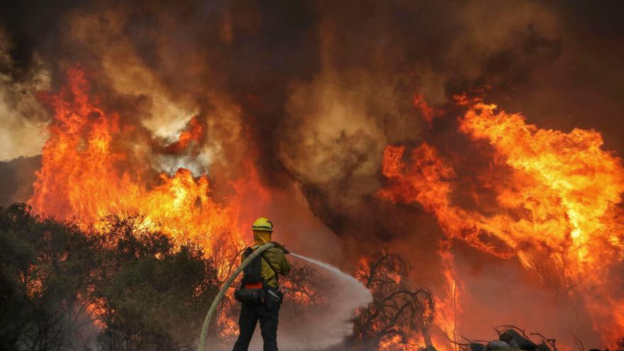 La Junta prohíbe encender fuego y la circulación de vehículos en zonas forestales