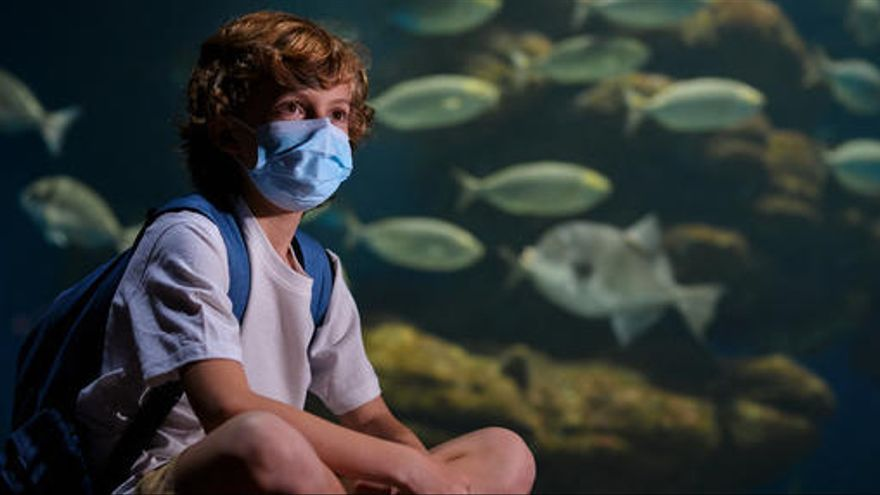 Palma Aquarium auf Mallorca öffnet nach acht Monaten wieder