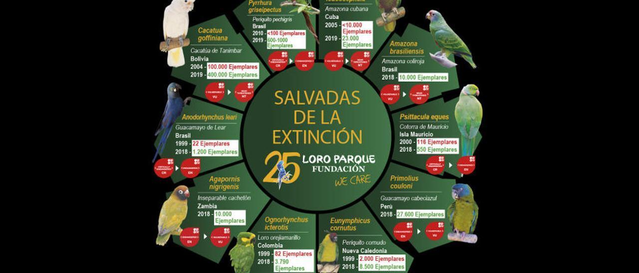 Recuperación de especies en Loro Parque