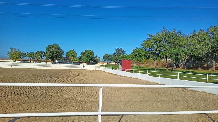 El salón del caballo y la artesanía de Torrejoncillo incluirá exhibiciones y espectáculos del 10 al 12