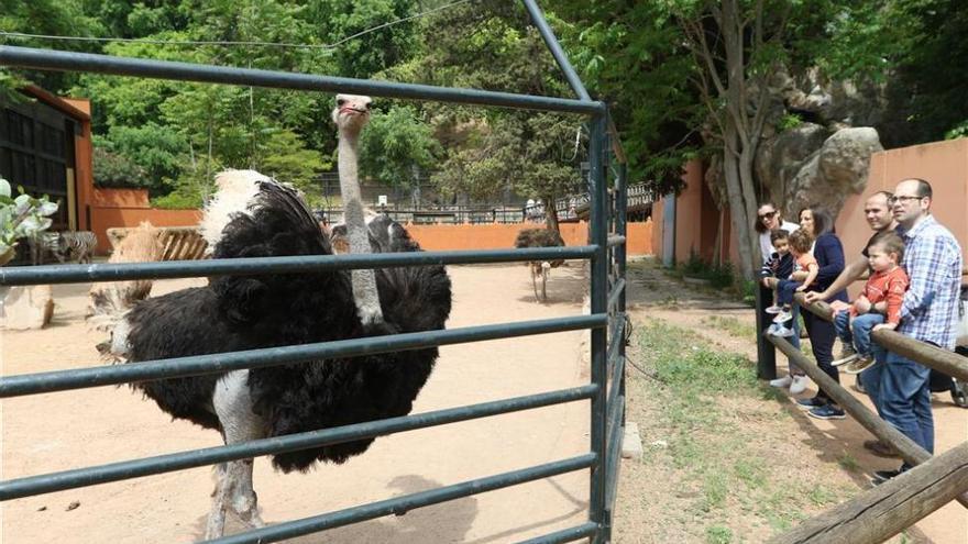 El medio siglo de existencia del Zoo de Córdoba