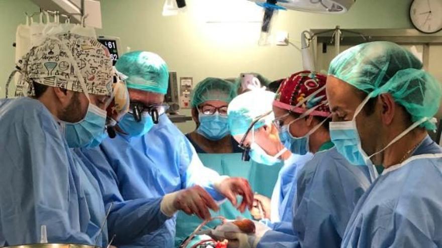Canarias registra 42 donantes de órganos en lo que va de año