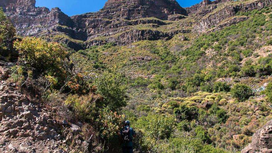 Ruta Juncal de Tejeda – Barranco del Siberio -Taiguy – Vistas Roque Palmés y Roque El Cofre o del Mulato
