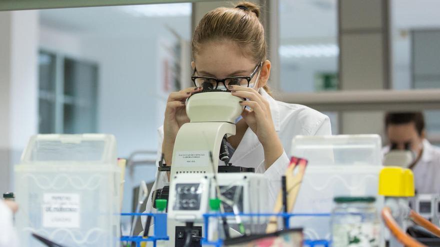 El número de tesis doctorales aprobadas aumenta un 20%