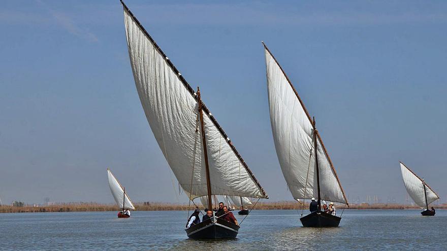 La regata d'imatges de la vela llatina