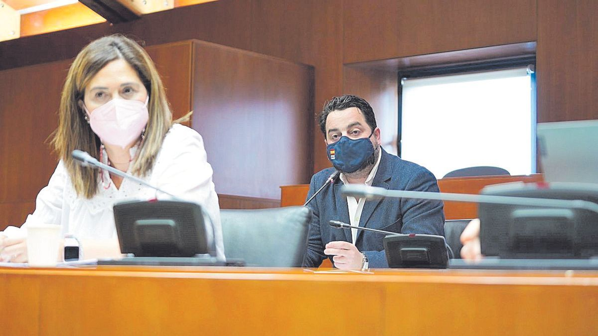 David Arranz (Vox), quien ha presentado la iniciativa, junto a Susana Gaspar (Ciudadanos), durante la comisión.