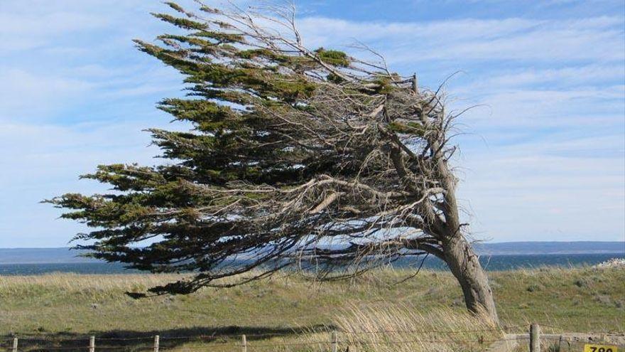 Rachas muy fuertes de viento este martes en el interior norte de Castellón