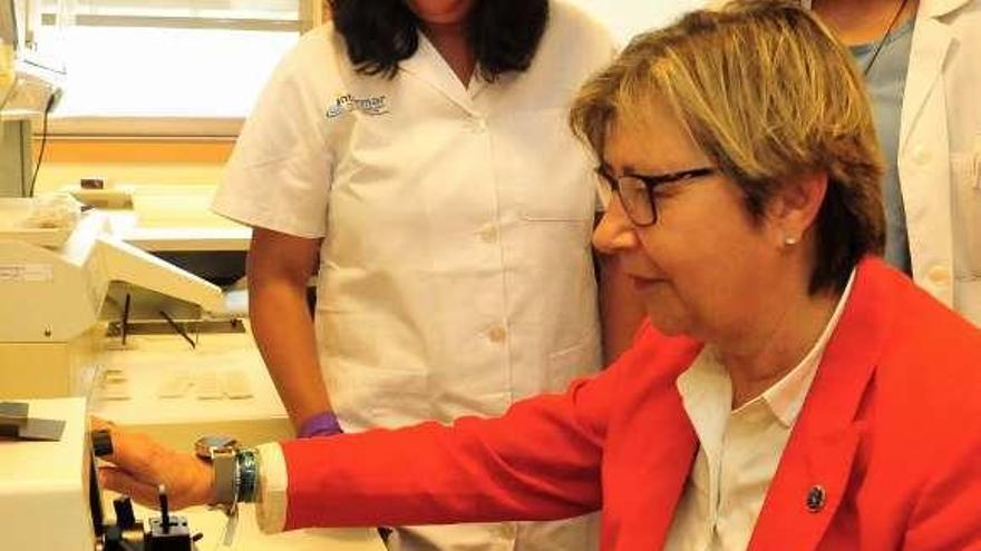 El Intecmar mantiene servicios esenciales para garantizar la seguridad alimentaria al ciudadano