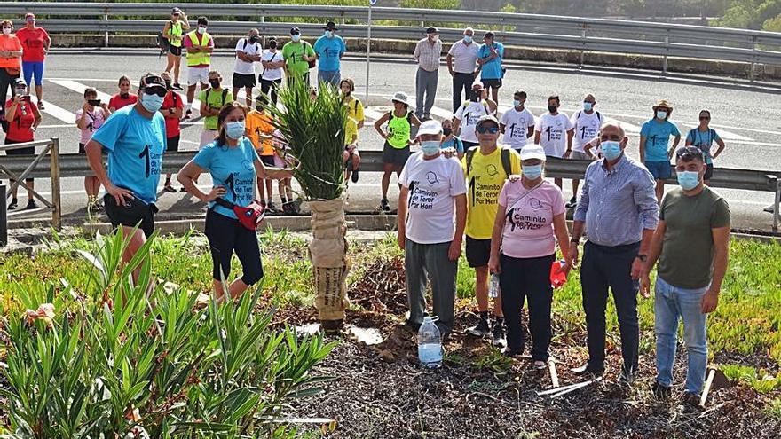 Amigos y familiares del profesor Heriberto Suárez plantan una palmera en su recuerdo