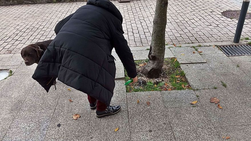 A Guarda pide a los dueños de mascotas que limpien los orines en la calle para evitar malos olores