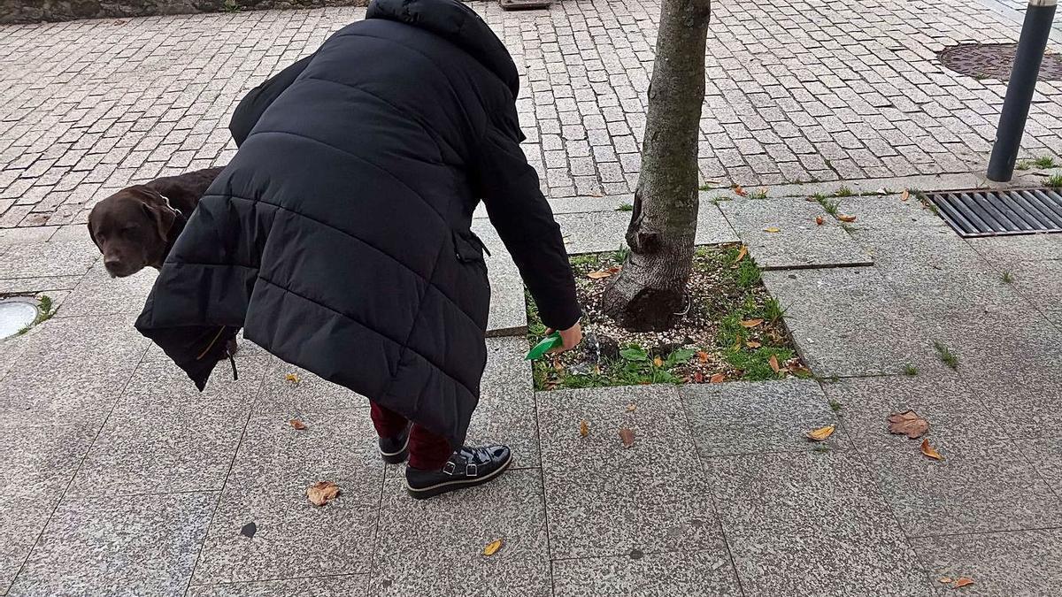 Una vecina de A Guarda echa la solución de agua y vinagre tras la micción de su perro en la calle