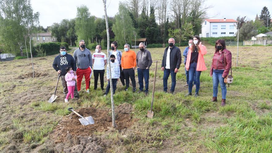 Vecinos y Concello plantan 50 árboles autóctonos junto al local social de Meixigo