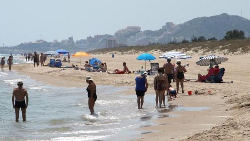 Cinc detinguts per l'assalt sexual a una dona a una platja naturista de València