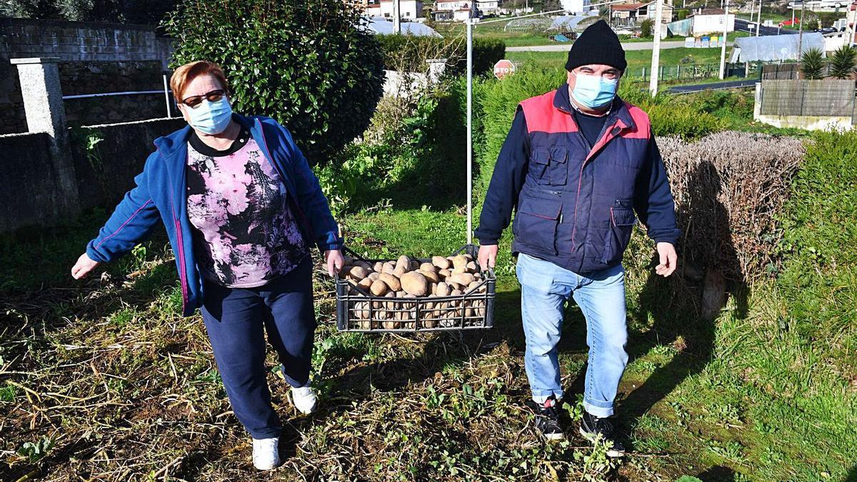 Dos vecinos de la parroquia de Chamín, en Arteixo, cargan una caja de patatas.     // VÍCTOR ECHAVE