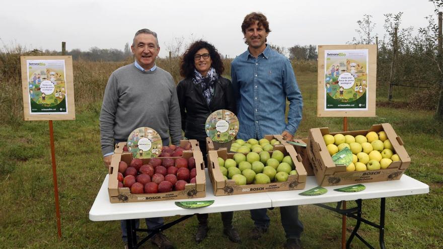 Catalunya bat de nou el rècord de vendes de poma i pera per segon mes consecutiu