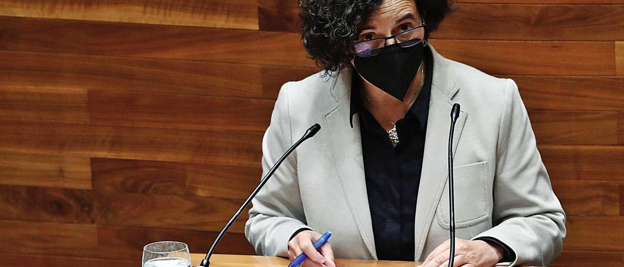 La consejera de Cultura, Berta Piñán, ayer, en la Junta General del Principado. | Armando Álvarez