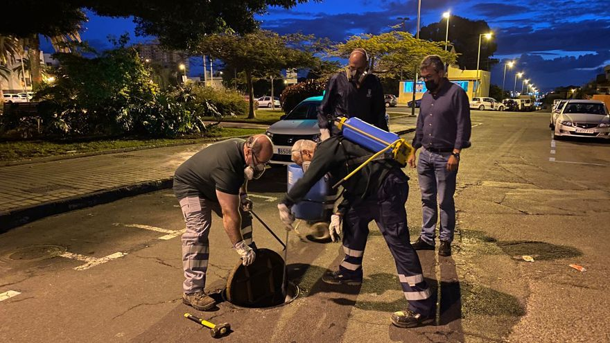 El Mercado de Altavista recibe un tratamiento antiplagas
