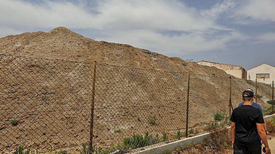 Santa Pola proyecta cómo retirar la montaña de posidonia junto a Vatasa