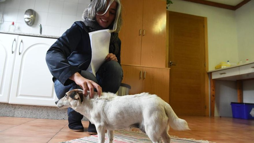 El Concello permite la adopción temporal de mascotas de la perrera