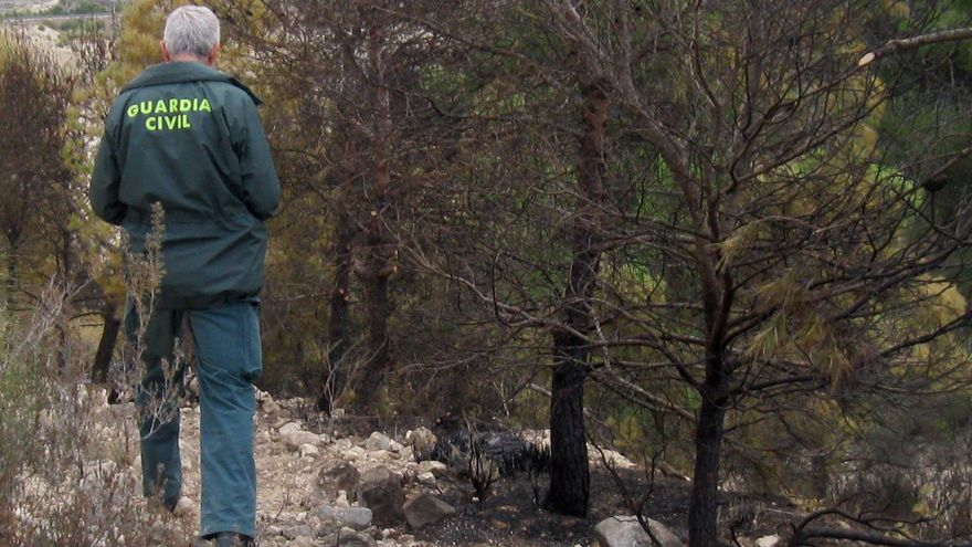 Un agricultor calcina 1.570 metros de monte en Ojós por negligencia