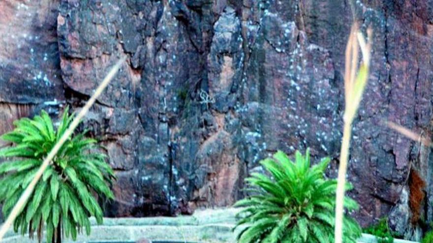 Un hombre muere tras caerse de noche por la ladera de un barranco