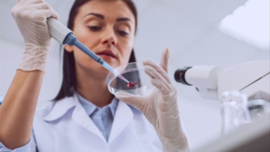 Biólogos, técnicos de laboratorio, personal para Leroy Merlín y ofertas para autónomos, lo más destacado en empleo hoy en Alicante