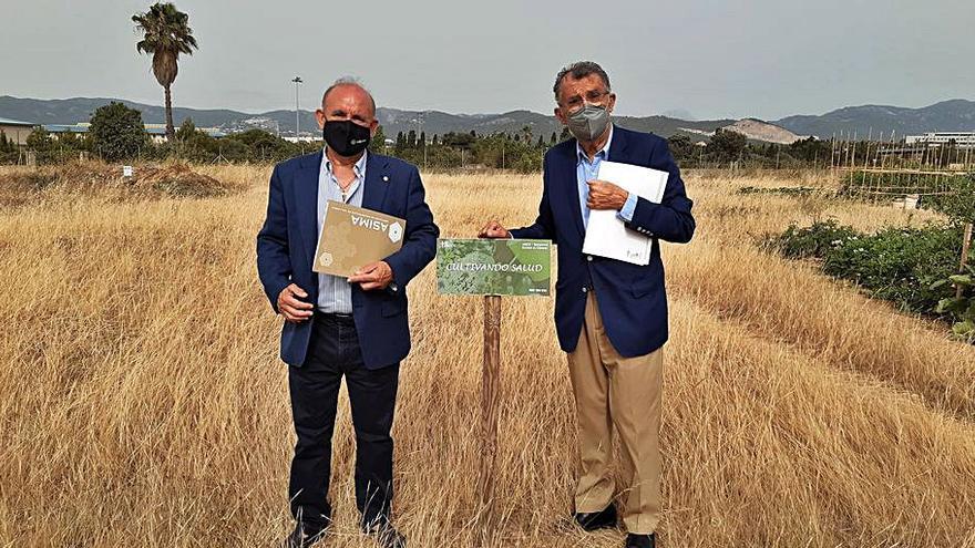 'Cultivando salud', el proyecto que pone  en marcha Asima y AECC Baleares
