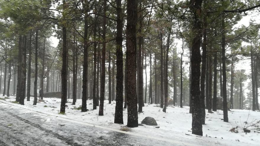 Nieve en Gran Canaria (6/2/2021)