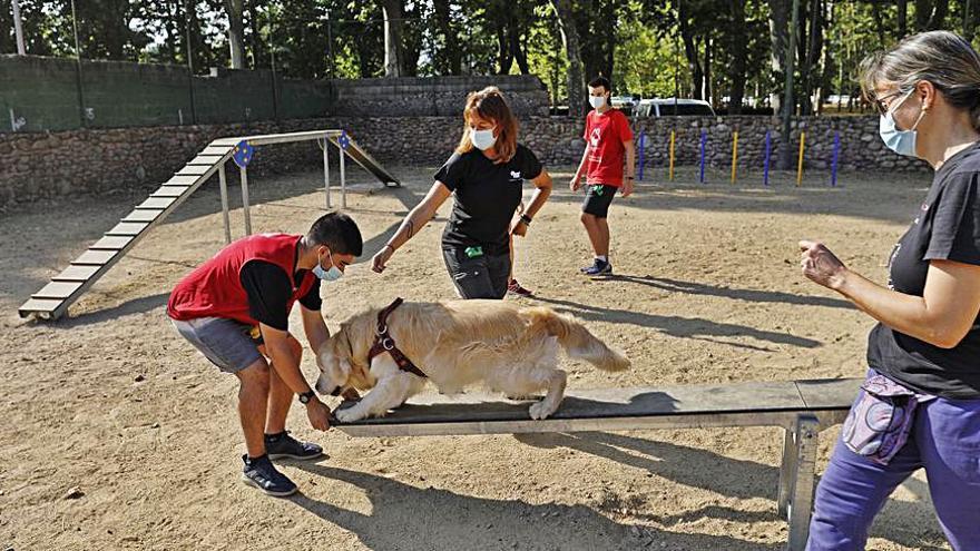 S'inaugura una àrea per a gossos al parc de la Devesa