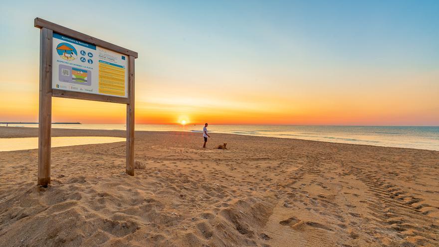 Este municipio de Castellón instala una ducha para perros en la playa
