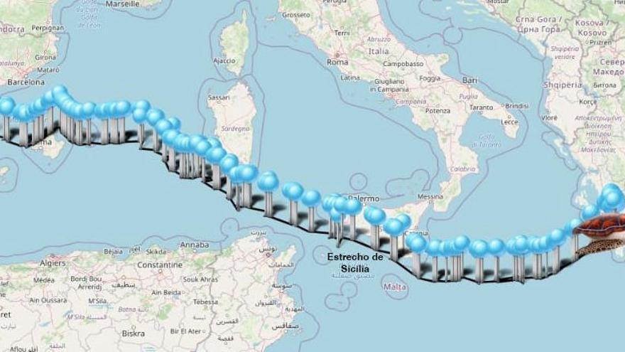 La tortuga Colomera recorre las costas de Grecia