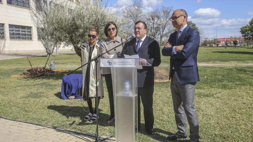 El fundador de Vectalia, Joaquín Arias, recibirá a la Mención Honorífica del Consejo Social de la UA a título póstumo