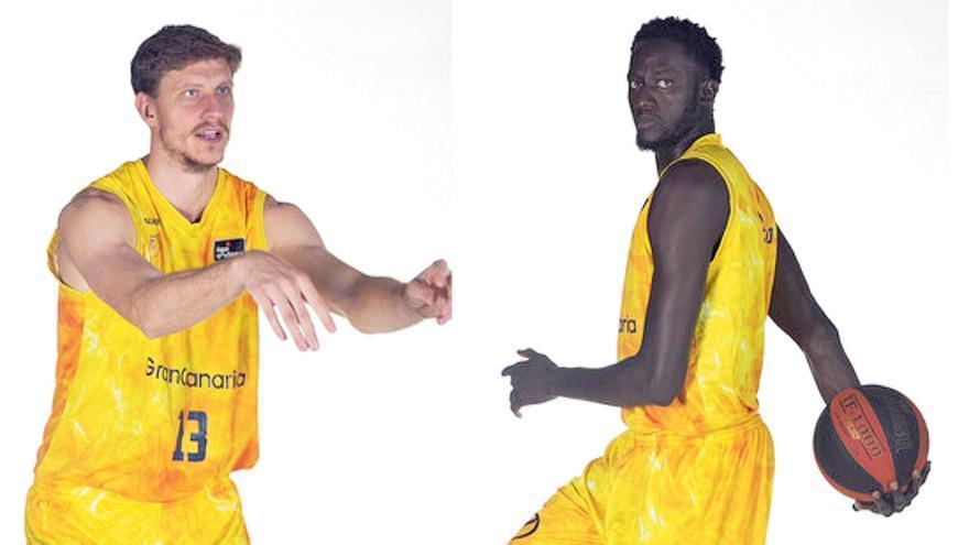 Pustovyi & Ilimane Diop: las nuevas Torres Gemelas de la ACB