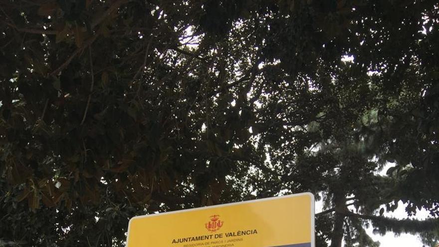 Vecinos del Carmen reiteran la necesidad de reformar la plaza Centenar de la Ploma