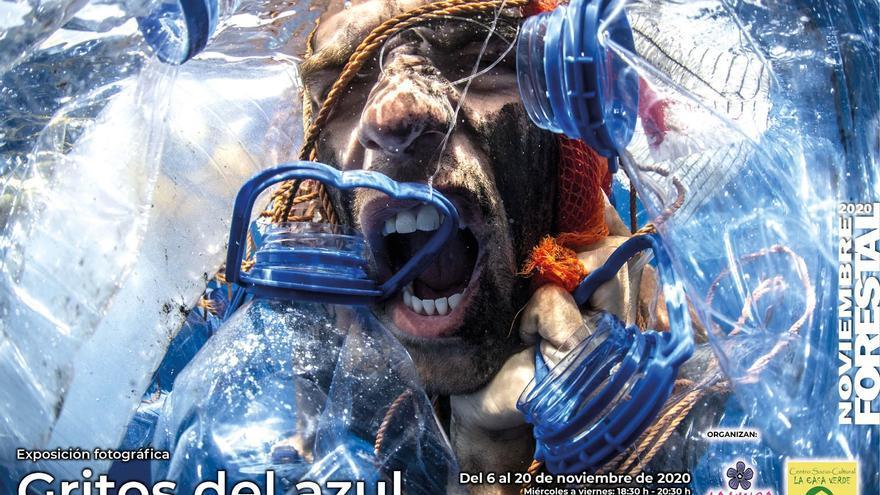 Exposición 'Gritos del Azul'