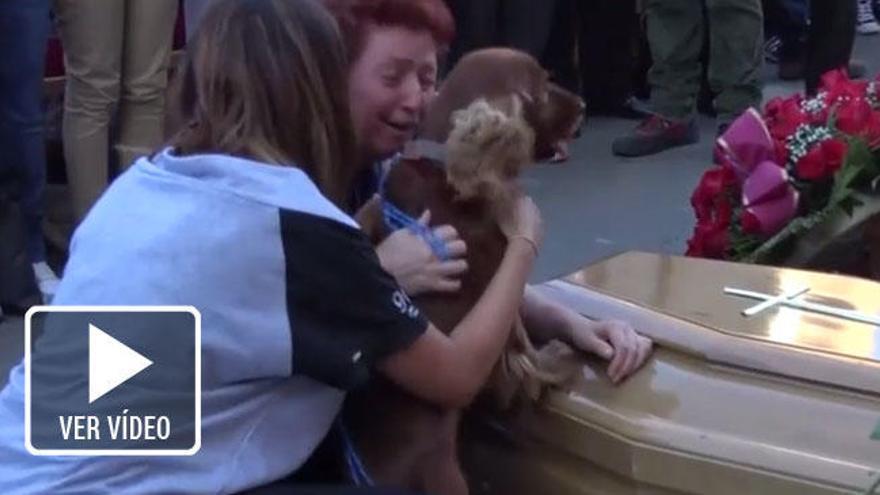 Un perro se despide de su dueño fallecido en el terremoto