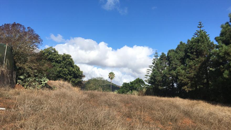 Los cielos poco nubosos predominan este sábado en Canarias