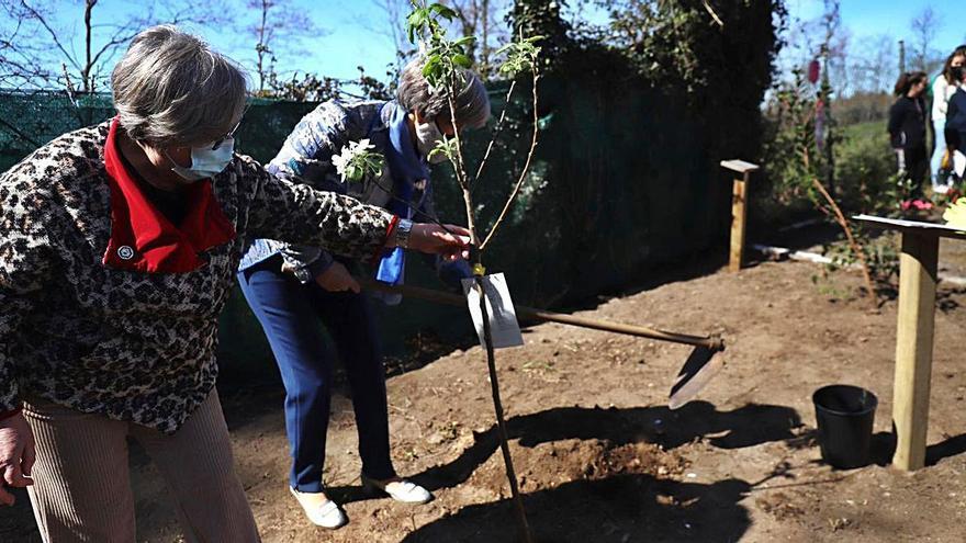 Visita de Charo Golmar a O Foxo y caminatas por la igualdad en Vea