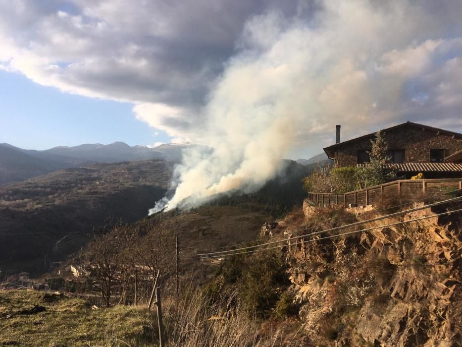 Incendi a una zona forestal de Montellà i Martinet
